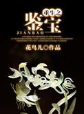 重生(sheng)之鑒(jian)寶